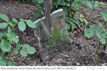 Blei im Boden kann sich schädlich auf Pflanzen und Menschen auswirken. Ein geringes Vorkommen ist jedoch völlig natürlich.