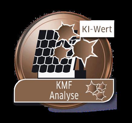 KMF-Analyse (KI-Wert)