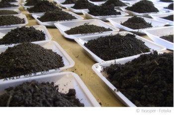 Unsere Laboranalyse Ihrer Bodenprobe